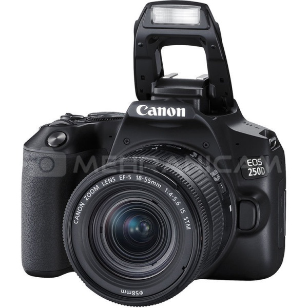 دوربین CANON 250D kit 18-55mm IS STM