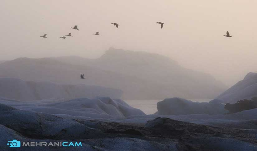 عکاسی در زمستان