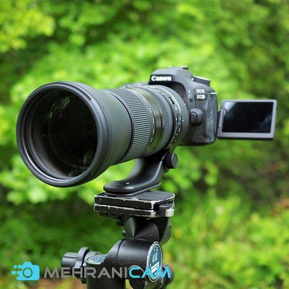 بهترین دوربین برای عکاسی از حیات وحش3